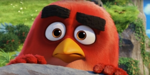 The Angry Birds International