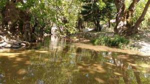 Ένας παράδεισος στην Αμπουδιώτισσα Ευβοίας